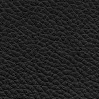 Taurillon Noir